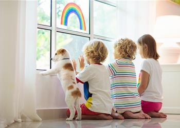 No Pets By-Laws Under Threat in Strata Schemes NSW